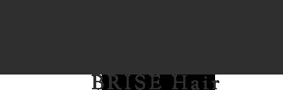 brise ロゴ